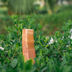 Picture of Neem Comb Full Size