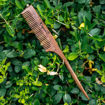Picture of Tail Rosewood/Sheesham Comb