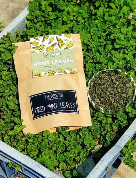 Picture of Dried Mint Leaves - Pack of 4